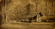 Barkley Prints - The Homeplace - Field Crib Print by Sandy Keeton