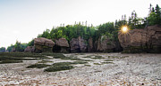 Bay Of Fundy Prints - The Hopewell Rocks sunset Print by Mircea Costina Photography