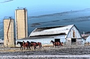 Cheryl Cencich Art - The HOrse Barn by Cheryl Cencich