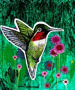 Wildlife Landscape Drawings - The Hummingbird by Genevieve Esson
