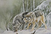 Wolves In Nature Prints - The Hunters Print by Nonie Wideman