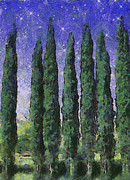 The Hushed Poetry Of Trees In The Night Print by Wendy J St Christopher
