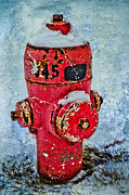 Aging Framed Prints - The Hydrant Framed Print by Tara Turner