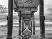 B And W Posters - The Iconic Scripps Pier Poster by Larry Marshall