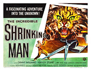 Vintage Memorabilia Prints - The Incredible Shrinking Man Poster Print by Sanely Great