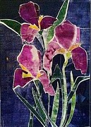 Mixed Media Reliefs Originals - The Iris Melody by Sherry Harradence