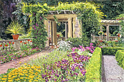 Gardenscape Paintings - The Italian Gardens Hatley Park by David Lloyd Glover