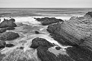 Jamie Pham - The jagged rocks and cliffs of Montana de Oro State Park in California in Black and White