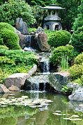 Garden - The Japanese Garden by Bill Cannon