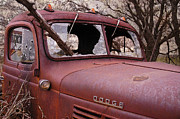 Rusty Pickup Truck Photos - The Killing Field by Betty LaRue