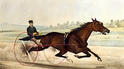 Trap Prints - The King of the Turf Print by Currier And Ives