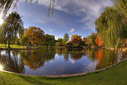 Autumn Scenes Metal Prints - The Lagoon - Boston Public Garden Metal Print by Joann Vitali