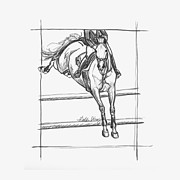 Wild Horse Drawings - The Landing by Gretchen Almy