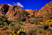 Ranch Prints - The Landscape of Red Rock Canyon Nevada Print by David Patterson