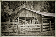 Wooden Building Posters - The Last Barn Poster by Joan Carroll