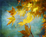 Fall Leaves Acrylic Prints - The Last Leaves Acrylic Print by Karen  Burns