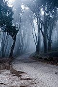 Sintra Acrylic Prints - The last road Acrylic Print by Jorge Maia