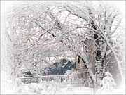 Kkphoto1 Prints - The Last Snow Storm Print by Kay Novy