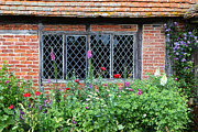 Foxglove Flowers Prints - The Lattice Window Print by James Brunker