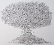 Black Commerce Drawings - The Lending Tree by Paul Calabrese
