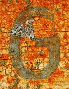 The Letter G With Lichens Print by Chris Berry