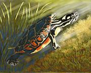 Waterlife Prints - The Light Seeker Print by Alison Barrett Kent