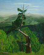 Phillip Compton - The Lightning Tree
