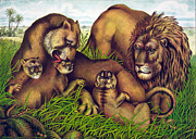 Wild Grass Posters - The Lion Family Poster by Nomad Art And  Design