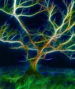 Nina Bradica Metal Prints - The Lit Up Tree Metal Print by Nina Bradica