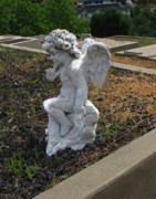 Gravestones - The Little Cherub by Peter Piatt