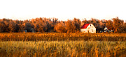 Red Roofed Barn Framed Prints - The Little Kansas Barn Framed Print by Kristen Garlow Piper
