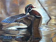 Wood Duck Paintings - The Little Majesty by Linda Grady