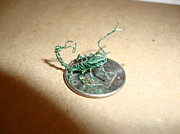 Copper Wire Sculpture Acrylic Prints - The Littlest Scorpion Acrylic Print by Scott Faucett