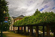Western Carolina University Photos - The Loft at Mars Hill College by Ryan Phillips