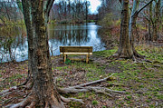Thinking Framed Prints - The Lone Bench Framed Print by Paul Ward
