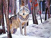 Watercolors Painting Posters - The Lone Wolf Poster by David Lloyd Glover
