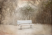 Snow Scene Digital Art Framed Prints - The Lonely Bench Framed Print by Betty LaRue