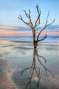 JHR  Photo ART - The Lonesome tree