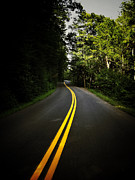 Mountain Road Metal Prints - The Long and Winding Road Metal Print by Natasha Marco