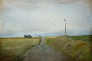Dirt Road Posters - The Long Road Home Poster by Juli Scalzi