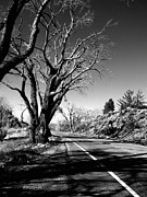 Old Roadway Metal Prints - The Long Way Around  Metal Print by Glenn McCarthy Art and Photography