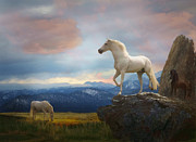Stallions Digital Art - The Look Out by Melinda Hughes-Berland