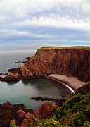 Bay Of Fundy Prints - The look out Print by Nina Stavlund
