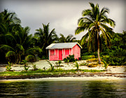 Tropical Islands Photos - The Love Shack by Karen Wiles