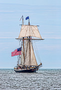 Wooden Ship Metal Prints - The Lynx Metal Print by Dale Kincaid