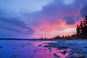 Laval Prints - The magic hour in Acadia National Park Print by Mircea Costina Photography