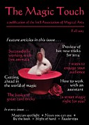 Book Title Art - The Magic Touch . faux magazine cover by Renee Trenholm