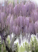 Wisteria Mixed Media Prints - The Magic Tree 3 Print by Kume Bryant