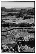 Trails Prints - The Magnificent Grand Canyon Print by David Patterson
