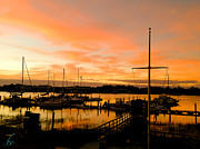 Bonnes Eyes Fine Art Photography - The Marina